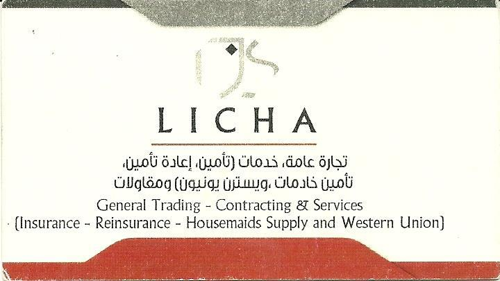 TJS Licha Group LLC.
